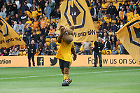Wolverhampton Wanderers mascot<br /> <br /> Photographer Rachel Holborn/CameraSport<br /> <br /> The Premier League - Wolverhampton Wanderers v Burnley - Sunday 16th September 2018 - Molineux - Wolverhampton<br /> <br /> World Copyright &copy; 2018 CameraSport. All rights reserved. 43 Linden Ave. Countesthorpe. Leicester. England. LE8 5PG - Tel: +44 (0) 116 277 4147 - admin@camerasport.com - www.camerasport.com