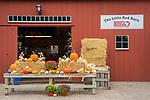 Bishops Farm Market, fall displays. Guilford, CT