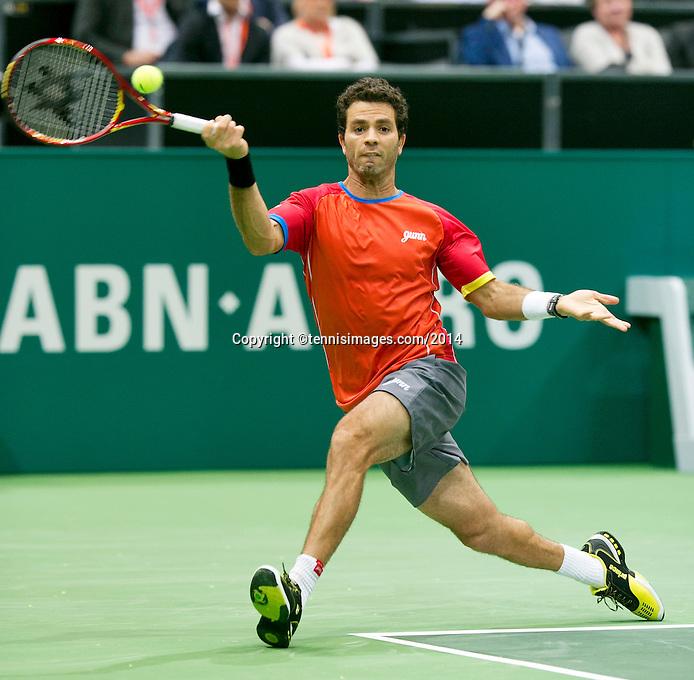 11-02-14, Netherlands,Rotterdam,Ahoy, ABNAMROWTT,Jean-Julien Rojer(NED)<br /> Photo:Tennisimages/Henk Koster