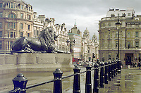 Lion at the foot of the Statue of Lord Nelson, Trafalgar Square, London, England