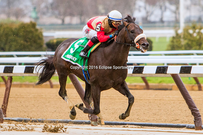 NEW YORK, NY - APRIL 09: Unified #5  with Jose Ortiz aboard. wins the Bay Shore Stakes at Aqueduct Race Track on April 9, 2016, in Ozone Park, New York. (Photo by Sue Kawczynski/Eclipse Sportswire/Getty Images)