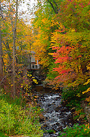 Up State New York fall season in Lake George, A quite time of the year after Columbus Day.  You can witness the cool weather breeze and water trickle though the streams, as the autumn leaves are colored brightly and scattered through the grounds