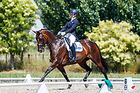 Sophie de Clifford rides Dona Frederica Welfare during Class 602: Zilco Level 6 Musical Freestyle. Final-2nd. 2019 NZL-Auckland Manukau Dressage Premier League Championship. Clevedon Showgrounds. Auckland. Saturday 19 January. Copyright Photo: Libby Law Photography