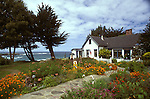 Gazing at the Agate Cove Inn, and view of the ocean, Mendocino, California
