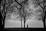 A silhouetted man walknig through trees in a park.
