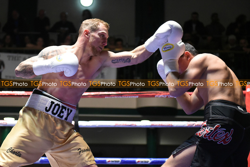 Joey Hayes (gold shorts) defeats Zaurs Sadihovs during a Boxing Show at York Hall on 18th February 2017