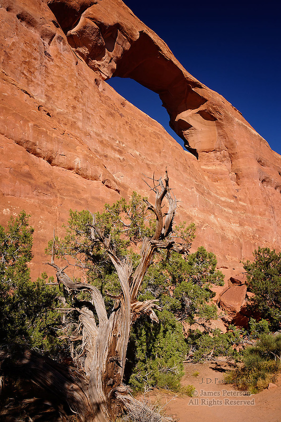 Sand Dune Arch, Arches National Park, Utah . Available in sizes up to 30 x 45 inches.