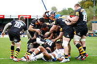 Wasps v Bath 20141012