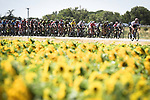 The start of Stage 14 of the 2018 Tour de France running 188km from Saint-Paul-Trois-Chateaux to Mende, France. 21st July 2018. <br /> Picture: ASO/Pauline Ballet | Cyclefile<br /> All photos usage must carry mandatory copyright credit (&copy; Cyclefile | ASO/Pauline Ballet)