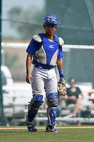 Toronto Blue Jays catcher Javier Hernandez (25) during a minor league spring training game against the Pittsburgh Pirates on March 21, 2015 at Pirate City in Bradenton, Florida.  (Mike Janes/Four Seam Images)