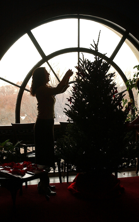 decorating1/121002 -- Abby Kurland, decorates a Christmas tree in the Russell office of her boss, Sen. Chris Dodd, D-Conn., Tuesday.
