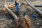 BANGLADESH, Southkhali in district Bagerhat, cyclone Sidr has flooded and destroyed many villages and claimed many victims / Bangladesch, Wirbelsturm Sidr und eine Sturmflut zerstoeren viele Doerfer im Kuestengebiet von Southkhali