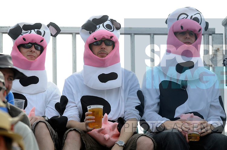 Some of the fancy dress spectators at Headingley.