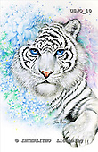 Marie, REALISTIC ANIMALS, REALISTISCHE TIERE, ANIMALES REALISTICOS, paintings+++++BengalFantasy,USJO10,#A# ,Joan Marie tiger