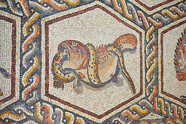 Fish eating a serpant from the 3rd century Roman mosaic villa floor from Lod, near Tel Aviv, Israel. The Roman floor mosaic of Lod is the largest and best preserved mosaic floor from the levant region along the eastern Mediterranean coast. It is unclear whether the owners were Jewish, Christian or pagan but either way they would have been wealthy to own such a magnificent floor. The Shelby White and Leon Levy Lod Mosaic Centre, Lod, Israel.