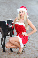 NO REPRO FEE. 1/11/2011.Christmas Cracker Rosanna Davison and some of Irelands Greyhounds took to the track today at Shelbourne Park in their sleigh to launch Christmas Nights at the Dogs. The Irish Greyhound Board are launching Christmas Party Night at the Dogs at their Greyhound Stadia around the Country, encouraging everyone to book a fun night at the dogs to celebrate  the festive season. With Packages to suit every pocket from restaurant dining to drinks with the lads, it really is heart racing stuff. For more information please contact Claire O Grady insight Consultants claire@insightconsultants.ie. Picture James Horan/Collins Photo Agency