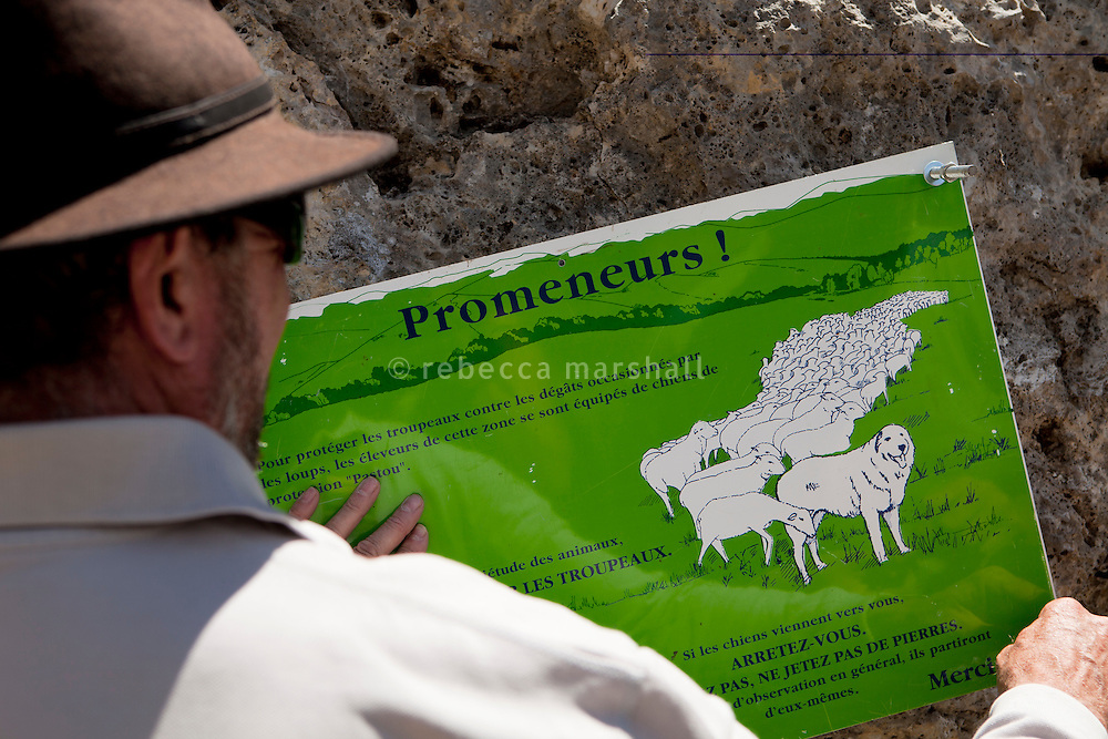"A national park ranger puts up a sign beside the footpath leading to the Plateau de Longon to warn hikers about the patou dogs that protect flocks of sheep grazing on the mountain, Mercantour National Park, French Alps, France, 01 August 2013. The sign reads ""If the dogs come towards you, stop. Don't shout, don't throw stones. After observing you for a while, they [the dogs] will generally leave of their own accord"""