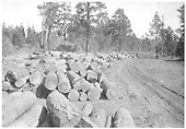 Cut logs yarded along a future New Mexico Lumber Co. railroad right-of-way for loading when the track is built.<br /> New Mexico Lumber Co.  San Juan National Forest, CO  Taken by Long, Morris - ca. 1928