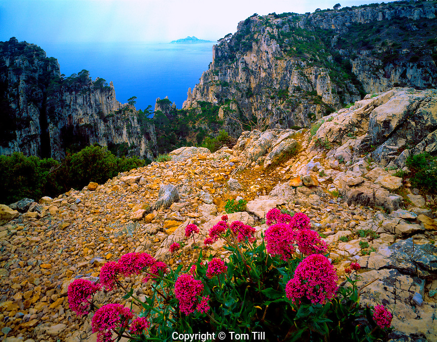 View of Calanque En Vau  Provence, France  Mediterranean Sea  Huge fiords on Provence seascoast  Near Marseille
