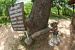 Killing Tree, Choeung Ek