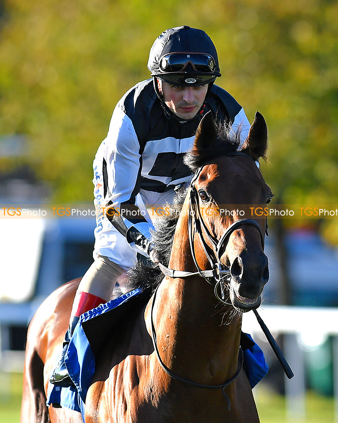 Helvetian ridden by Andrea Atenzi goes down to the start  of The Weatherbys General Stud Book Handicap Stakes during Afternoon Racing at Salisbury Racecourse on 3rd October 2018
