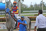 December 14, 2019: #2 Dream Marie with jockey Richard Mitchell on board, wins her race for 2 year olds at Gulfstream Park in Hallandale Beach, Florida, on December 14th, 2019. LizLamont/Eclipse Sportswire/CSM