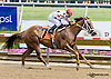 Sachicomula winning at Delaware Park racetrack on 6/7/14
