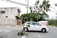 CAMPINAS, SP 18.02.2019-BURACO- Moradores do Jd Novo Campos Eliseos, colocaram um pedaço de arvore e pneus para alertar sobre um buraco na rua Arthur Nogueira. (Foto: Denny Cesare/Codigo19)