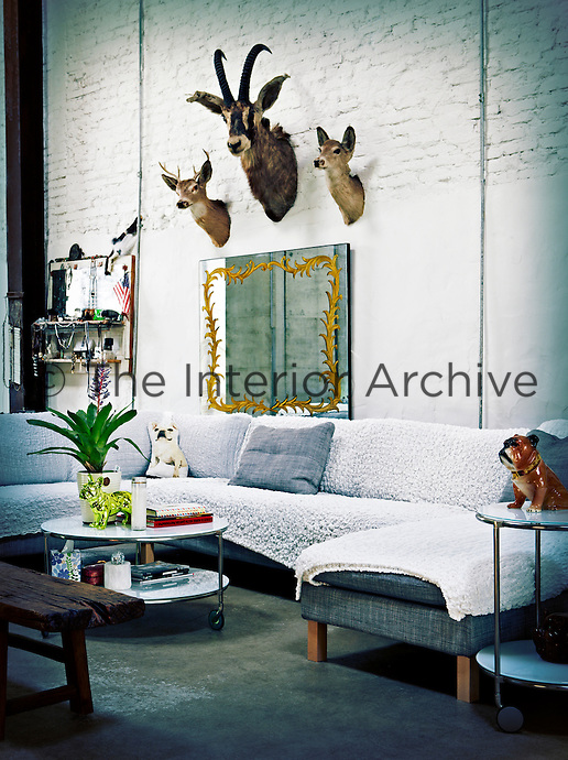 An informal living room with painted brick work. A grey corner sofa with a textured sip-covers is placed around a circular coffee table on wheels. Vintage taxidermy animal heads and flea-market mirrors are displayed on the wall above.