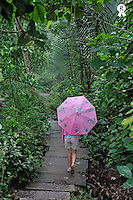 Young girl with umbrella walking in forest (Licence this image exclusively with Getty: http://www.gettyimages.com/detail/84430550 )