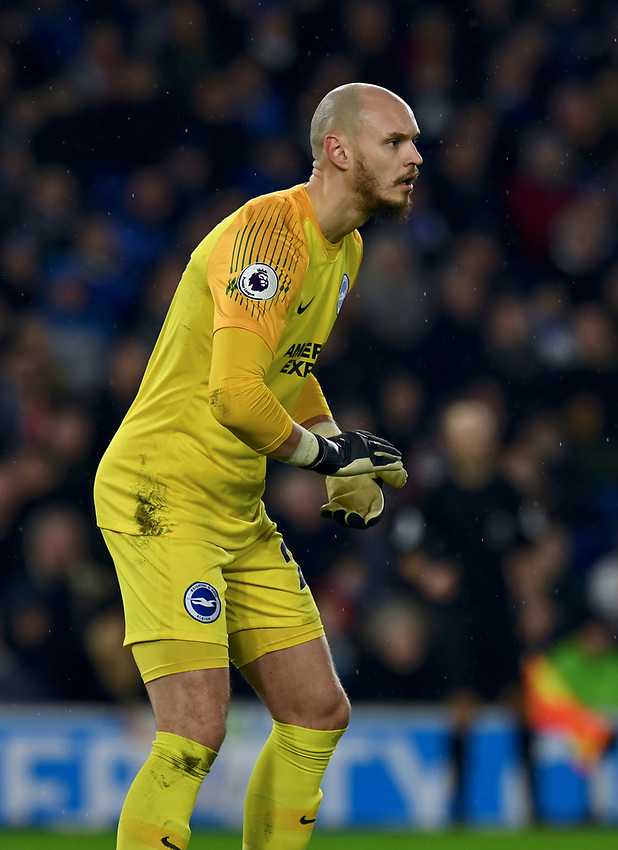 Brighton & Hove Albion's David Button<br /> <br /> Photographer David Horton/CameraSport<br /> <br /> The Premier League - Brighton and Hove Albion v Liverpool - Saturday 12th January 2019 - The Amex Stadium - Brighton<br /> <br /> World Copyright © 2018 CameraSport. All rights reserved. 43 Linden Ave. Countesthorpe. Leicester. England. LE8 5PG - Tel: +44 (0) 116 277 4147 - admin@camerasport.com - www.camerasport.com
