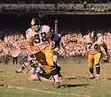 Pittsburgh Steelers Earl Gros (38)  during a game against the New York Giants on October 12,1969 at Yankee Stadium in the Bronx, New York.  The New York Giant beat the Pittsburgh Steelers 10-7. Earl Gros played for 9 season with 4 different teams.(SportPics)