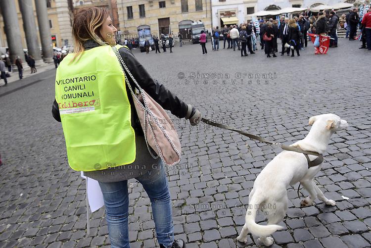 Roma, 4 Dicembre 2014<br /> Inizia al Pantheon la raccolta firme per l'abolizione delle botticelle, le carrozze trainate dai cavalli.<br /> Il progetto di delibera di iniziativa popolare &egrave; lanciato da AnimalistiItaliani, AVA, AVCPP, ENPA, LAV e OIPA.