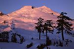 Mount Baker from three tree tarn