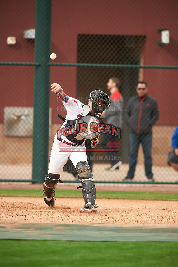 Ryan Kavulick (8) of Lutheran High North High School in Macomb, Michigan during the Under Armour All-American Pre-Season Tournament presented by Baseball Factory on January 15, 2017 at Sloan Park in Mesa, Arizona.  (Zac Lucy/MJP/Four Seam Images)