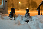 Feb. 9, 2013  Merrick, New York, U.S. - Blizzard Nemo hits Long Island South Shore communities. Men's boots on front stoop of home show amount of snow fallen by 1:08 AM this night.