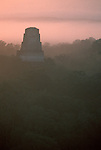 Tikal; Guatemala; Mayan temple; jungle; sunrise; Central America; World Heritage Site; archeological; site;