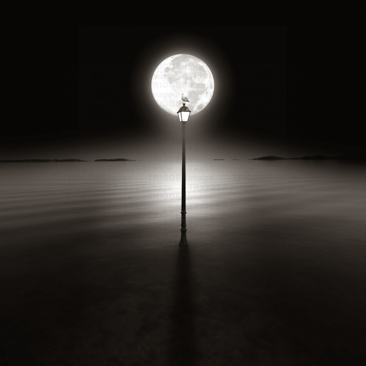 A seagull sitting on top of a lamp post at night silhouetted by the moon above a calm sea looking to the horizon