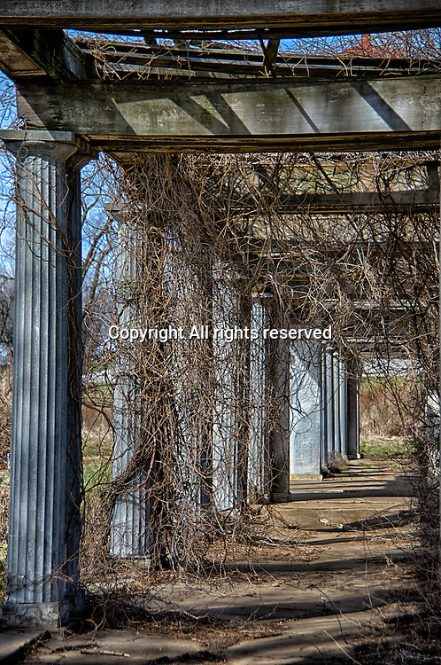 Vines hang from the top of an old, historic pergola at Longview Farms in Lee's Summit, Missouri.