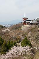 Japan, Kyoto. Kiyomizu-dera Buddhist Temple.