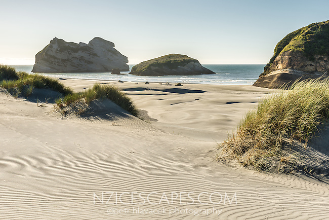 White sand dunes on Wharariki Beach on west coast of South Island, Nelson Region, South Island, New Zealand