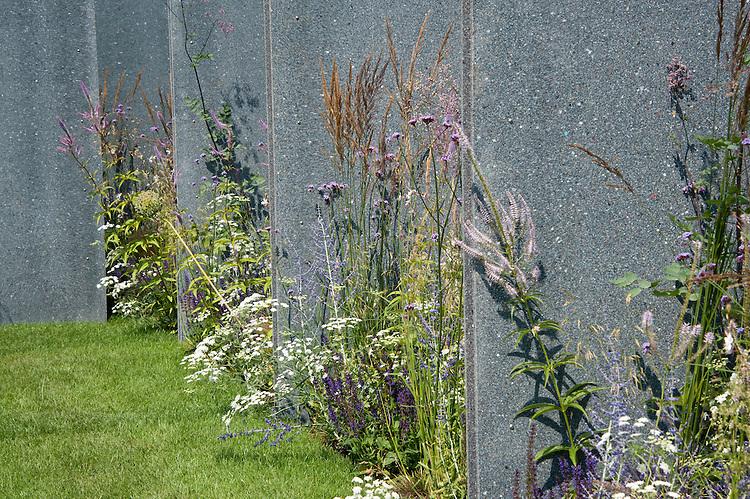 The World Vision Garden, Hampton Court Flower Show 2011. Plants incude Ammi majus, Calamagrostis × acutiflora 'Karl Foerster',  Verbena bonariensis, Veronicastrum virginicum 'Fascination'.