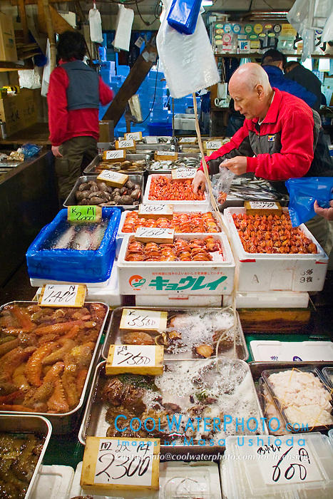 various fresh sea food for sale at wholesale shop including sea cucumbers, clams, abalones, Tsukiji Fish Market or Tokyo Metropolitan Central Wholesale Market, the world's largest fish market, hadling over 2,500 tons and over 400 different kind of fresh sea food per day