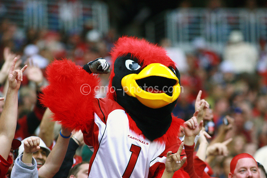 Dec 07, 2008; Glendale, AZ, USA; Big Red, the Arizona Cardinals mascot celebrates with Cardinals fans in the stands during the first quarter of a game against the St. Louis Rams at University of Phoenix Stadium.  The Cardinals won the game 34-10 to clinch the NFC West division title.  Mandatory Credit: Chris Morrison-US PRESSWIRE