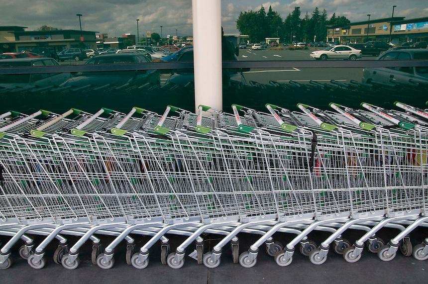 Trolleys, Rototuna 2010