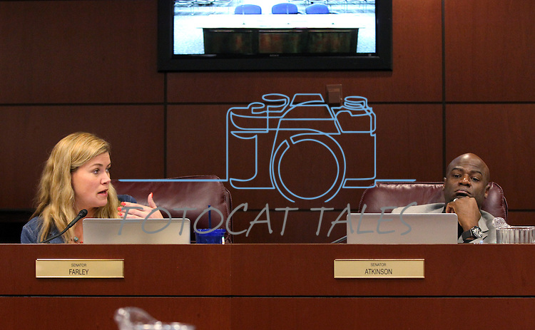 Nevada Sens. Patricia Farley, R-Las Vegas, and Kelvin Atkinson, D-Las Vegas, debate in committee at the Legislative Building in Carson City, Nev., on Friday, March 20, 2015. <br /> Photo by Cathleen Allison