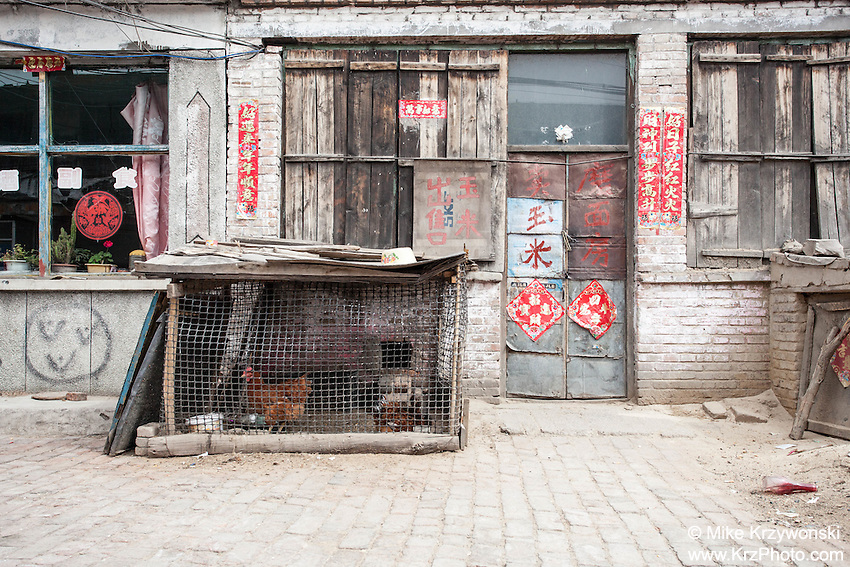 Caged chickens in front of a house in a rural village, Shanxi Province, China