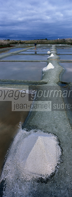 Europe/France/Poitou-Charentes/17/Charente-Maritime/Ile de Ré/Env de Loix-en-Ré/Fier-d'Ars : Récolte du sel dans un marais salant
