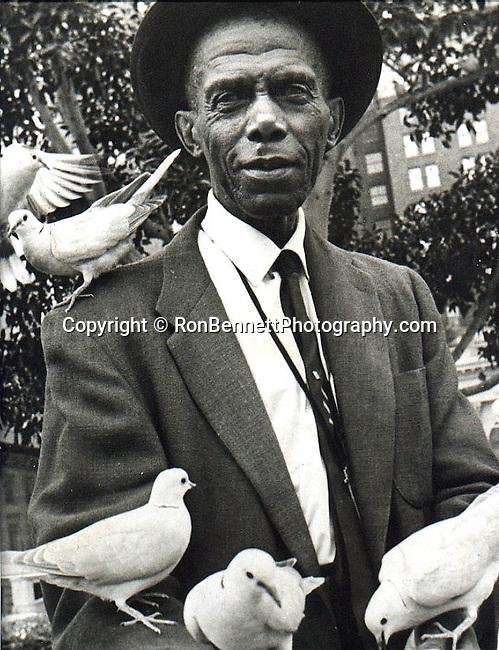 Bird Man with pigeons, feeding pigeons Washington DC, pigeons, man feeds pigeons, Fine art photography by Ron Bennett © Copyright,