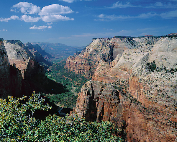 Zion Canyon and Virgin River from Angels Landing Overlook, Zion National Park, Utah, USA.